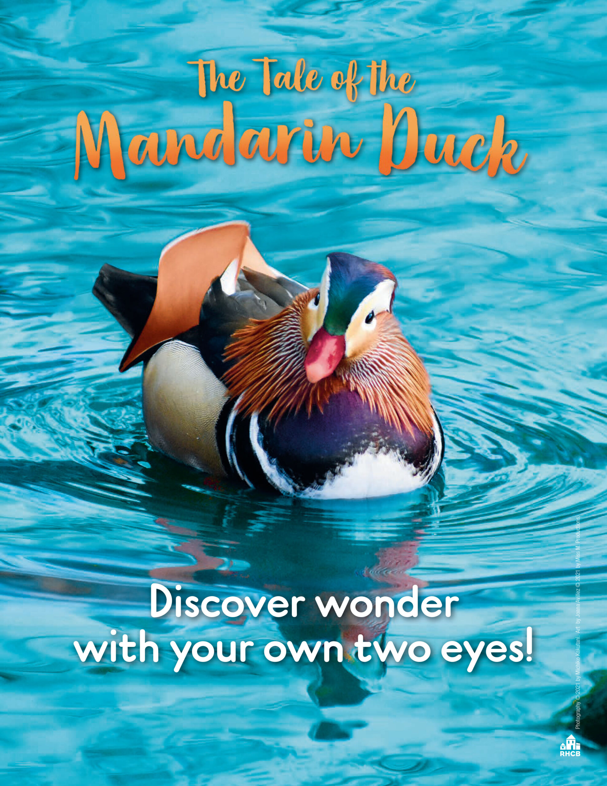 The Tale of the Mandarin Duck Activities