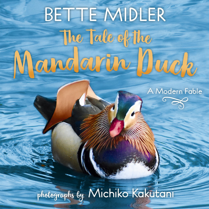 Cover of The Tale of the Mandarin Duck